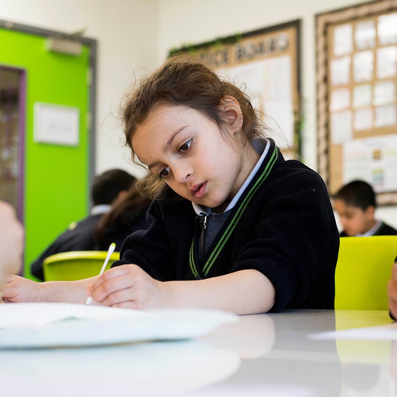 Pupil concentrating in science