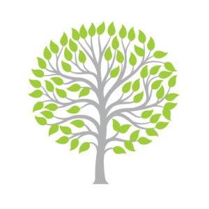 Olive Tree Primary School favicon logo